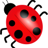 lady_bug_transparent
